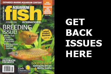 Aquarium Fish International Back Issues