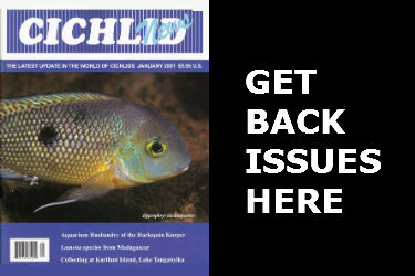 Cichlid News Back Issues