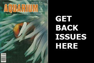 Freshwater And Marine Aquarium Magazine Back Issues FAMA