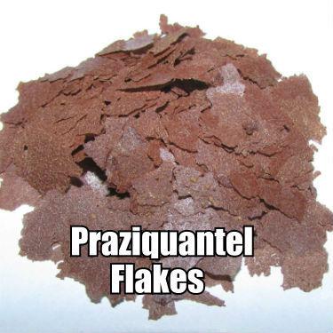 PRAZIQUANTEL Anti Parasite Flakes