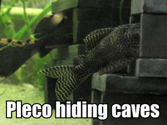 Hiding Caves for Pleco - great for breeding