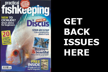 Practical Fishkeeping Magazine Back Issues