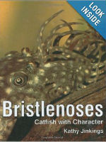 On sale new or used a must have book on bristlenoses