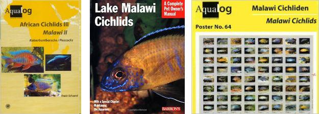 Malawi Cichlid Poster