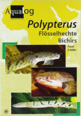 Aqualog Polypterus by Frank Schafer